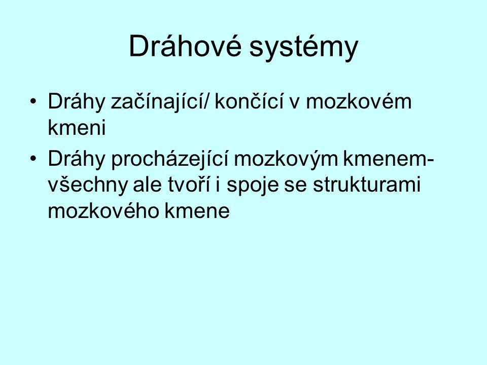 Dráhové systémy Dráhy začínající/ končící v mozkovém kmeni