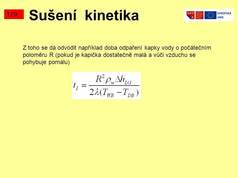 Sušení kinetika TZ9.