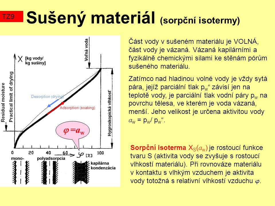 Sušený materiál (sorpční isotermy)