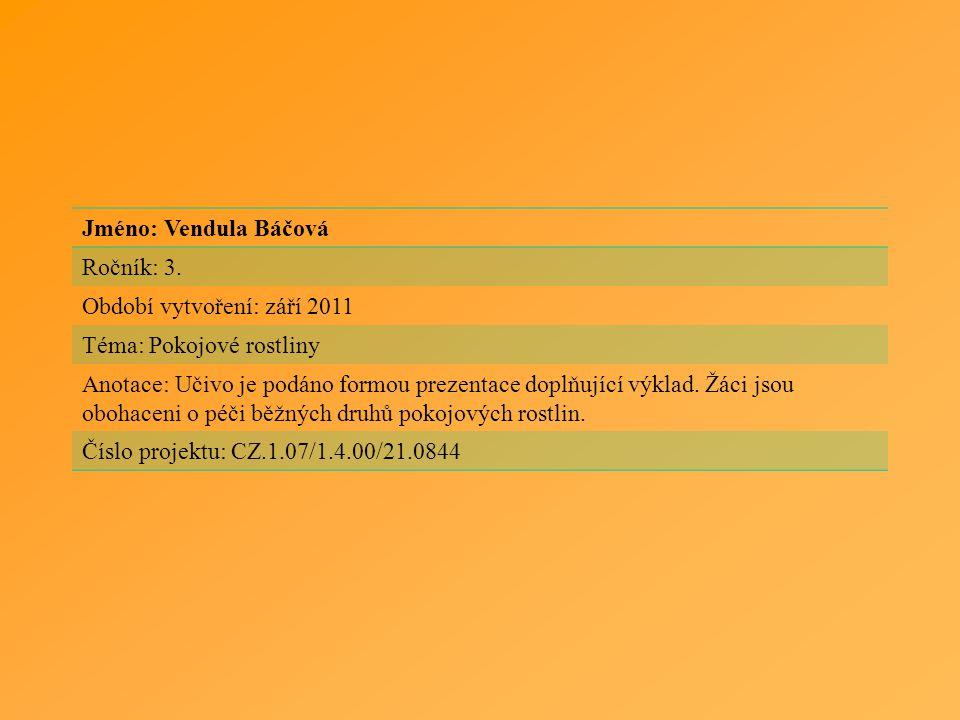 Jméno: Vendula Báčová Ročník: 3. Období vytvoření: září 2011. Téma: Pokojové rostliny.