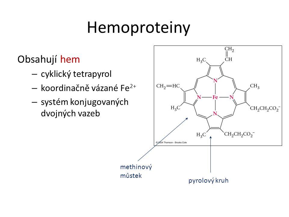 Hemoproteiny Obsahují hem cyklický tetrapyrol koordinačně vázané Fe2+