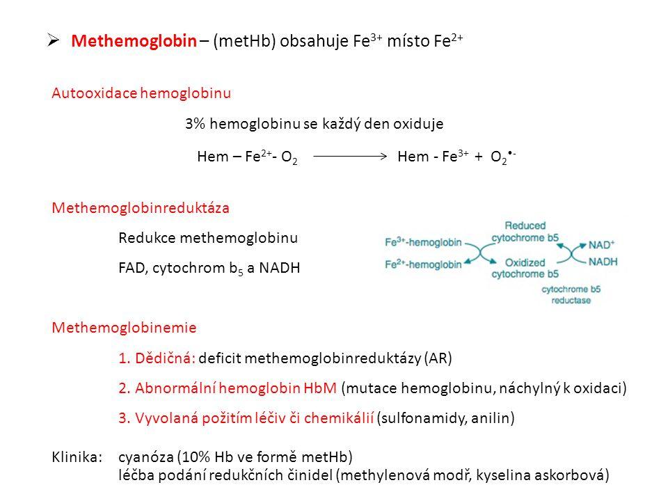 Hem – Fe2+- O2 Hem - Fe3+ + O2•-