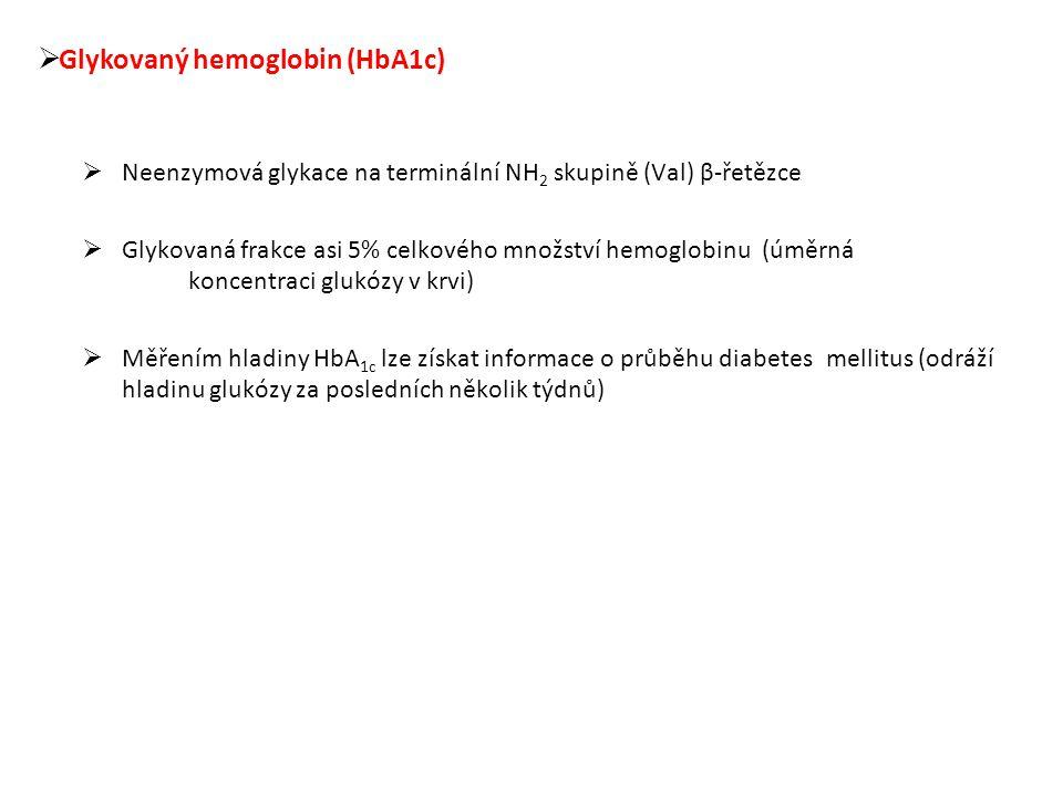 Glykovaný hemoglobin (HbA1c)