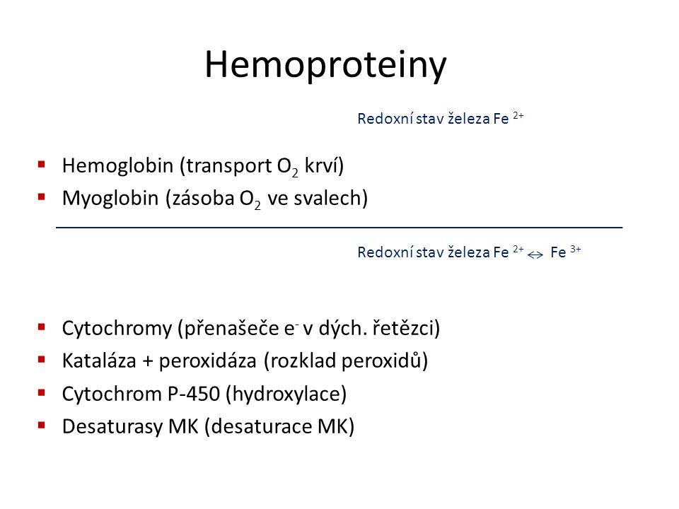 Hemoproteiny Hemoglobin (transport O2 krví)