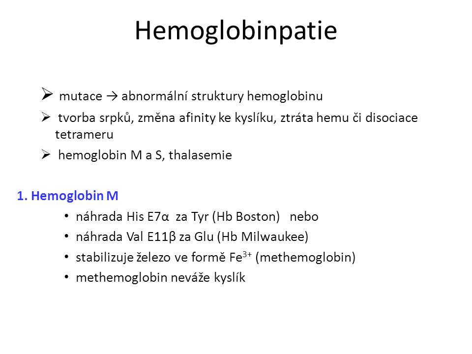 Hemoglobinpatie mutace → abnormální struktury hemoglobinu