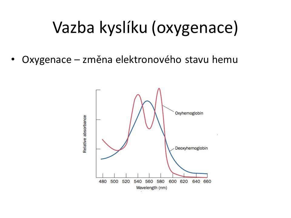 Vazba kyslíku (oxygenace)