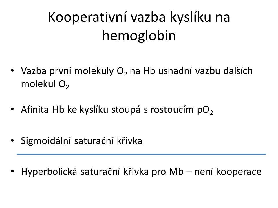 Kooperativní vazba kyslíku na hemoglobin