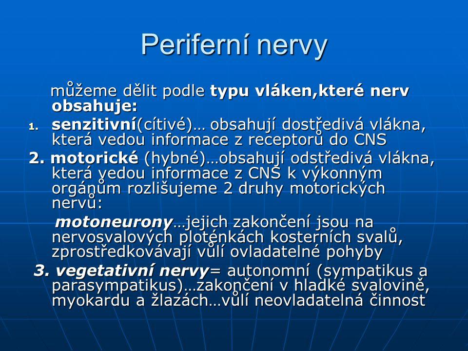Periferní nervy můžeme dělit podle typu vláken,které nerv obsahuje: