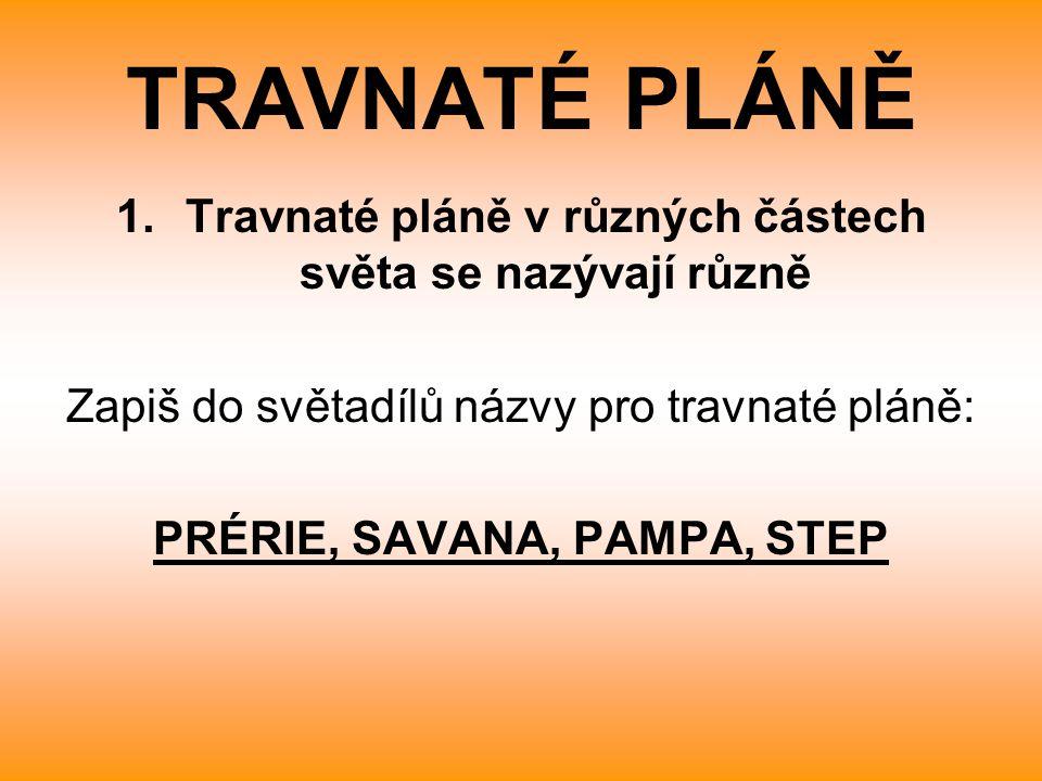 TRAVNATÉ PLÁNĚ Travnaté pláně v různých částech světa se nazývají různě. Zapiš do světadílů názvy pro travnaté pláně: