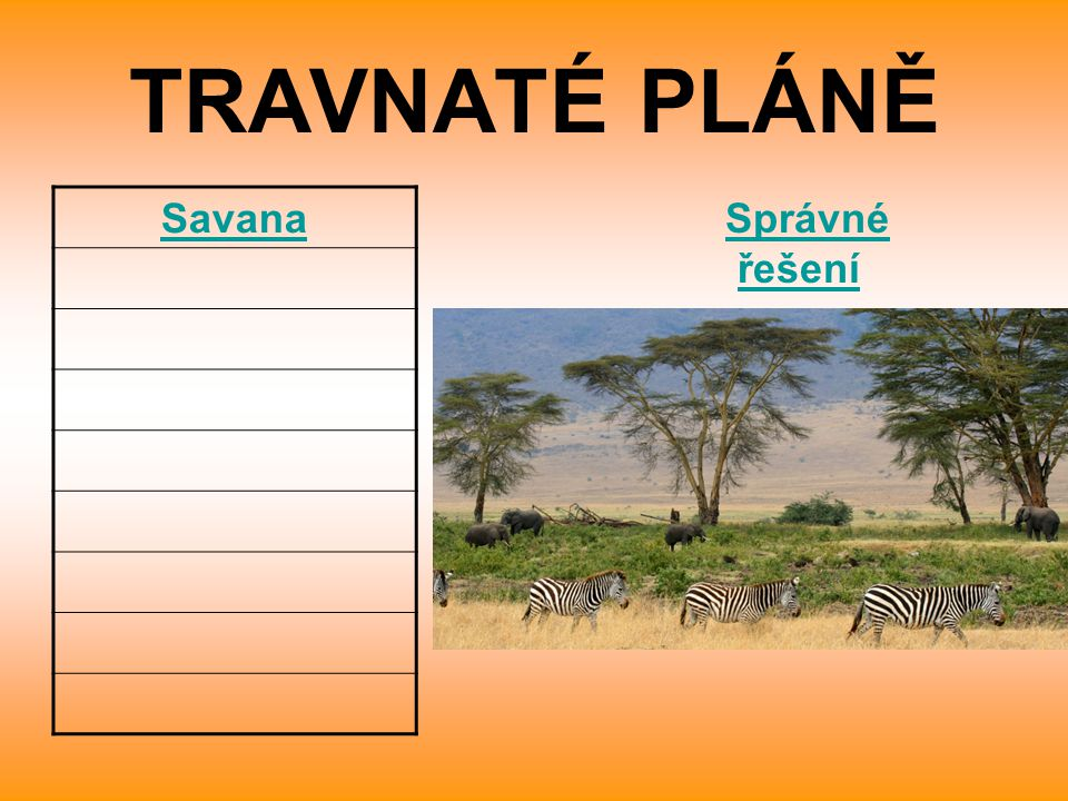 TRAVNATÉ PLÁNĚ Savana Správné řešení
