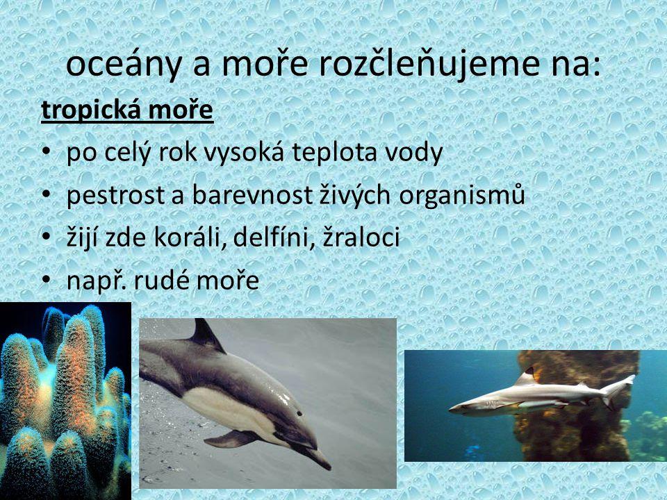 oceány a moře rozčleňujeme na: