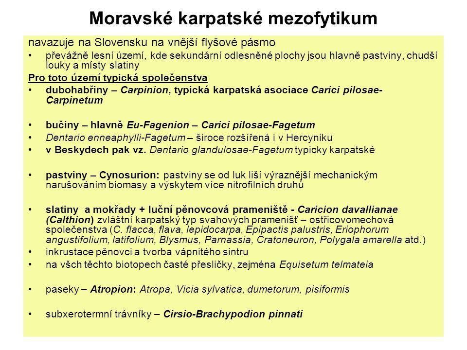 Moravské karpatské mezofytikum