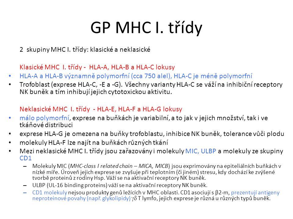 GP MHC I. třídy 2 skupiny MHC I. třídy: klasické a neklasické