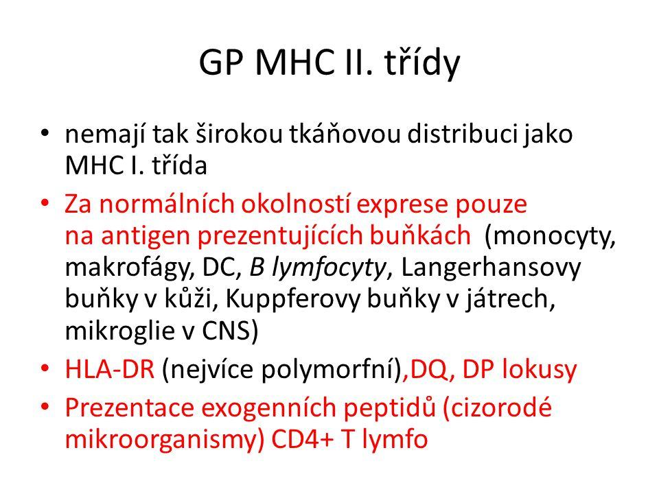 GP MHC II. třídy nemají tak širokou tkáňovou distribuci jako MHC I. třída.