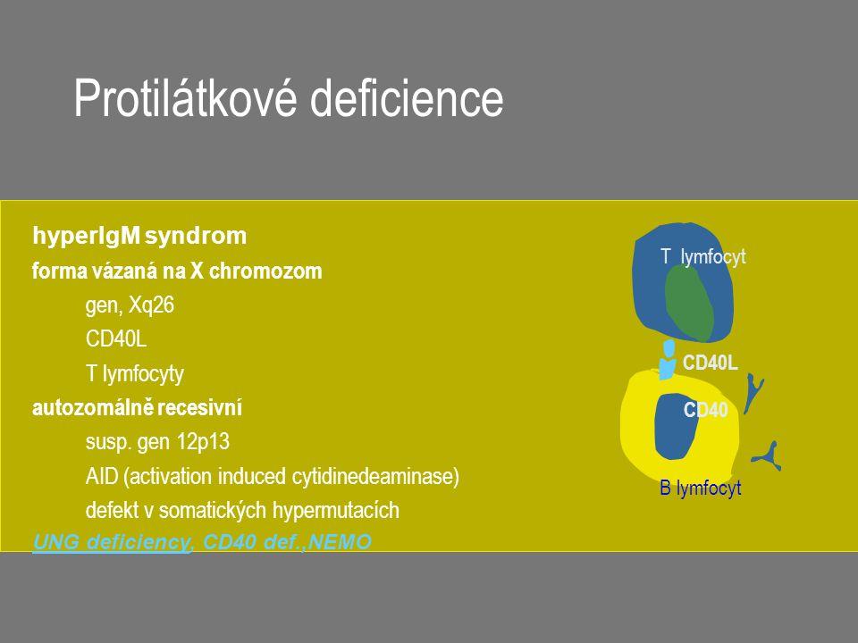 Protilátkové deficience