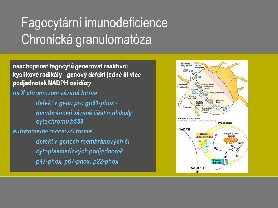 Fagocytární imunodeficience Chronická granulomatóza