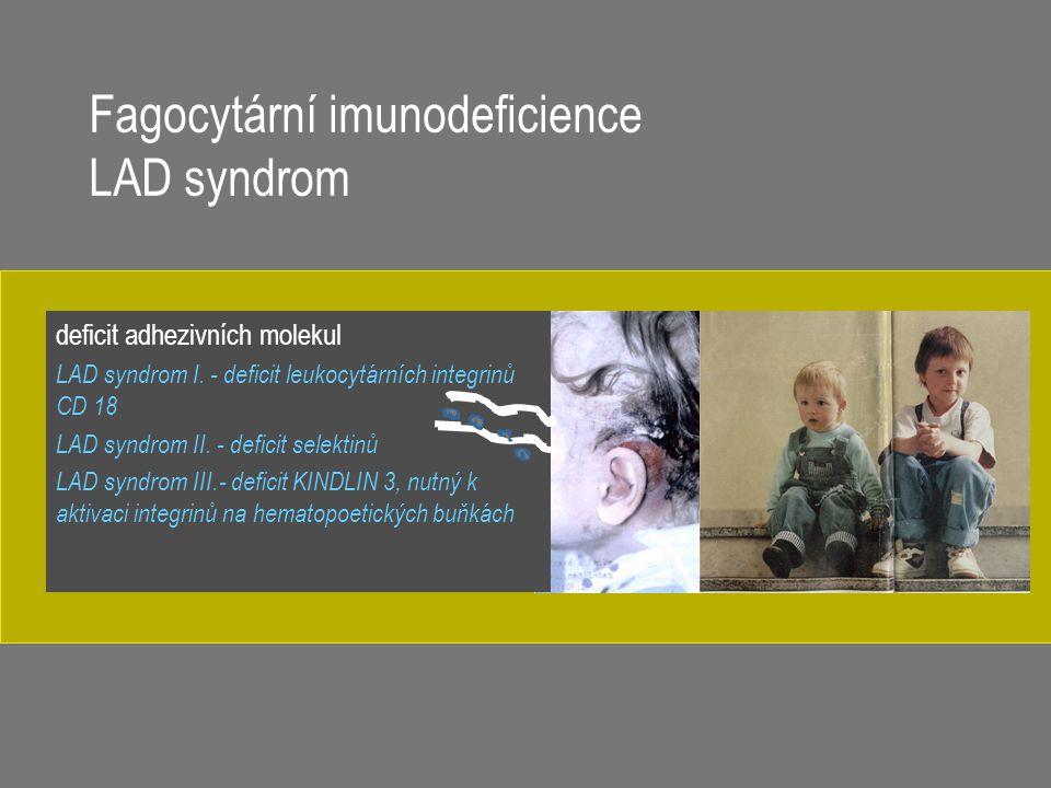 Fagocytární imunodeficience LAD syndrom