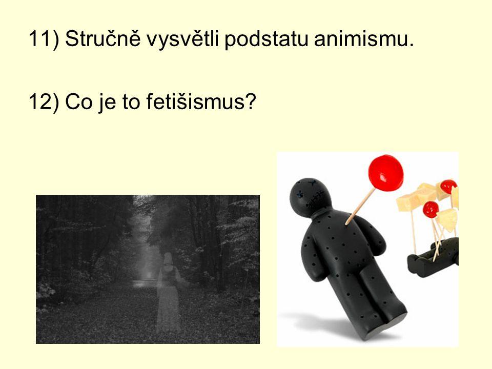 11) Stručně vysvětli podstatu animismu.