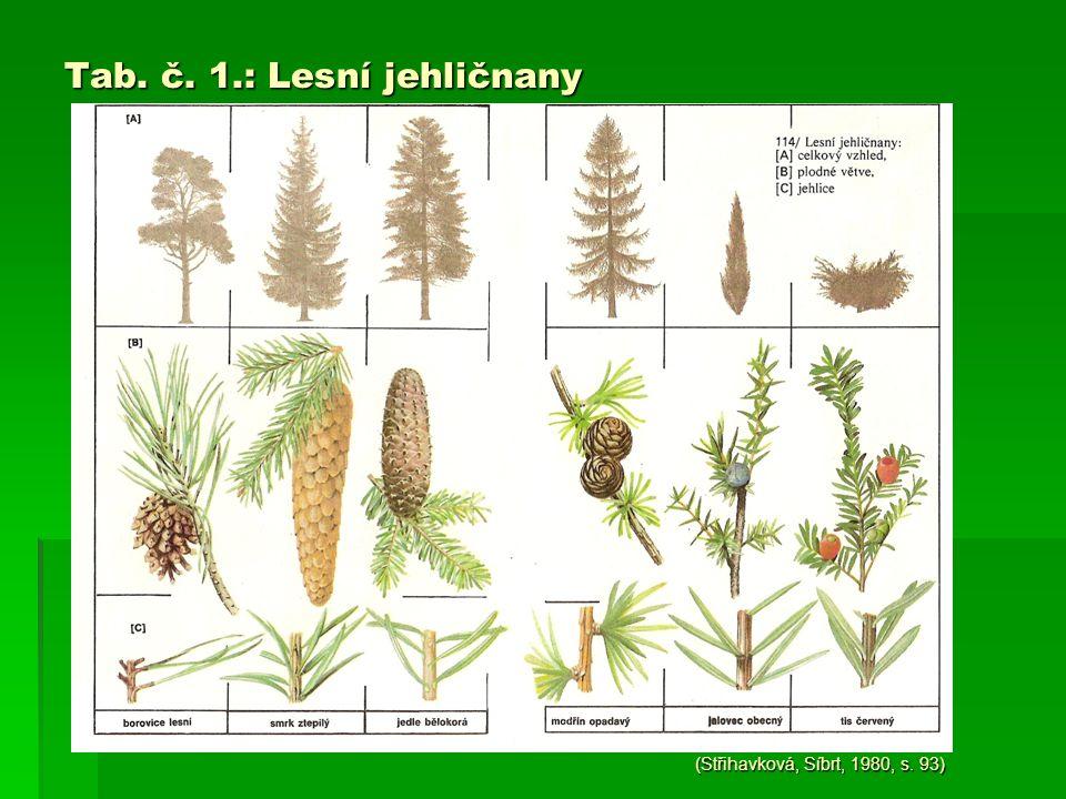 Tab. č. 1.: Lesní jehličnany