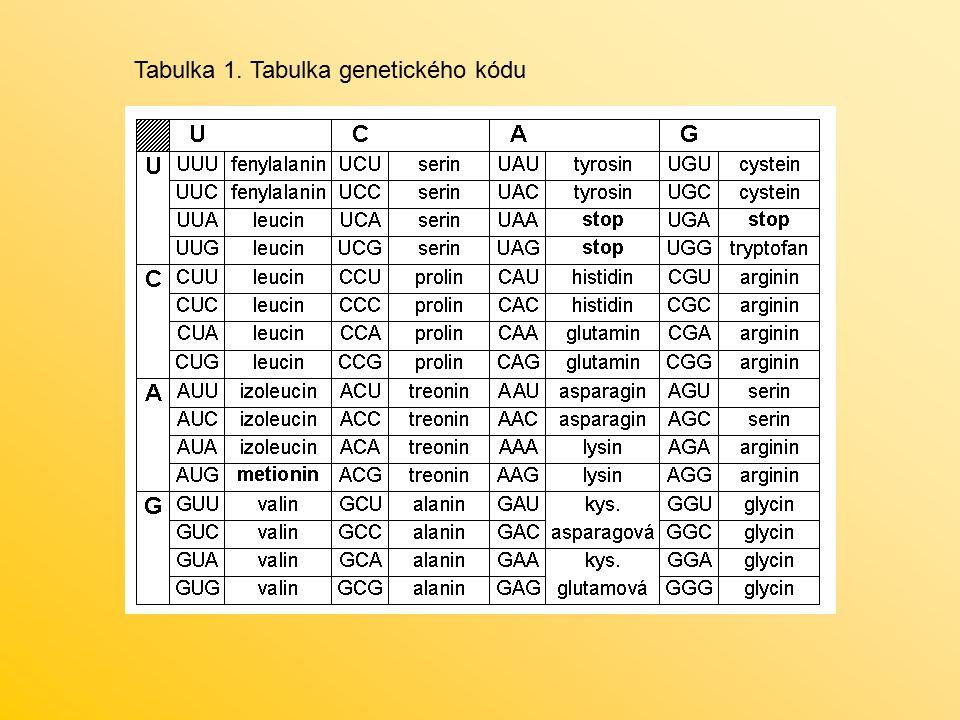 Tabulka 1. Tabulka genetického kódu