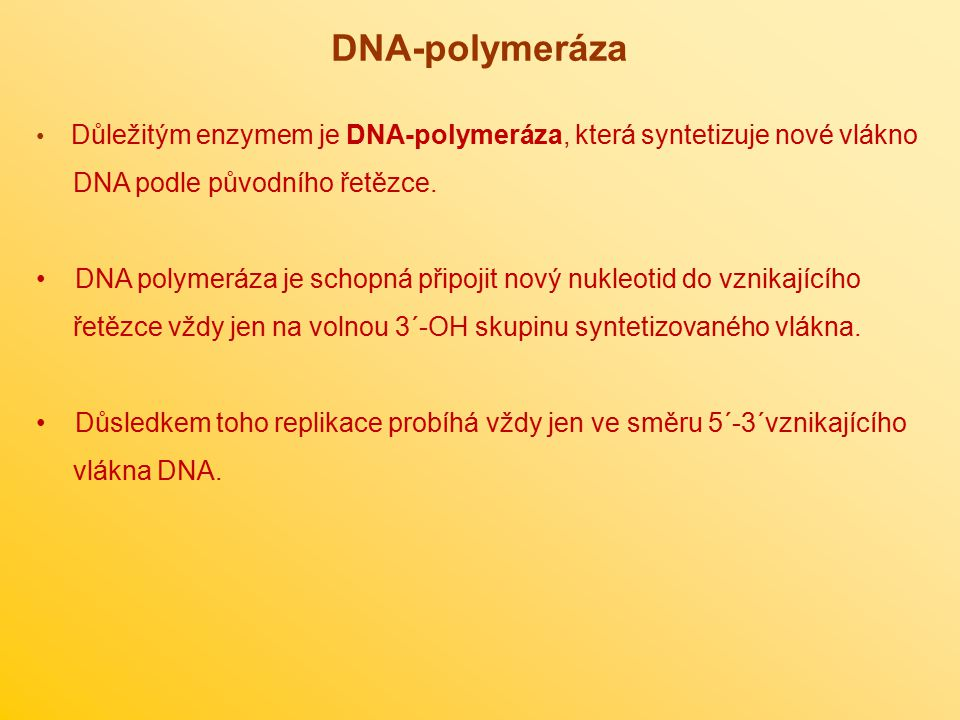 DNA-polymeráza DNA podle původního řetězce.