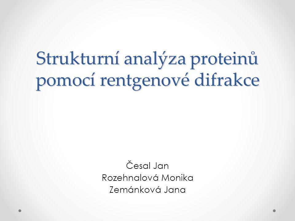 Strukturní analýza proteinů pomocí rentgenové difrakce