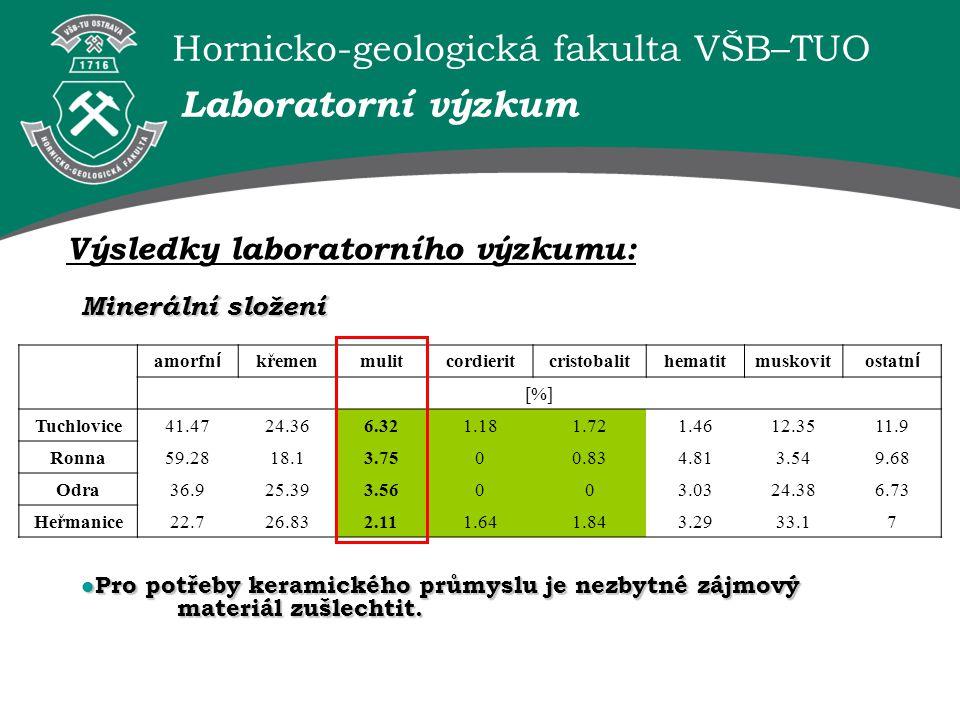Laboratorní výzkum Výsledky laboratorního výzkumu: Minerální složení