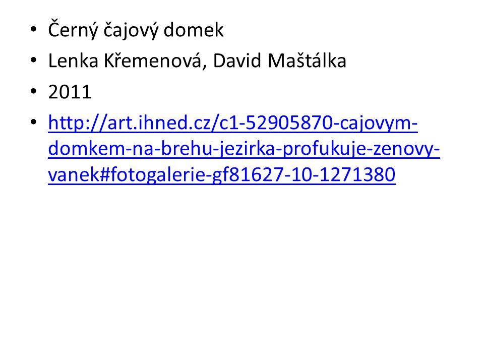 Černý čajový domek Lenka Křemenová, David Maštálka. 2011.