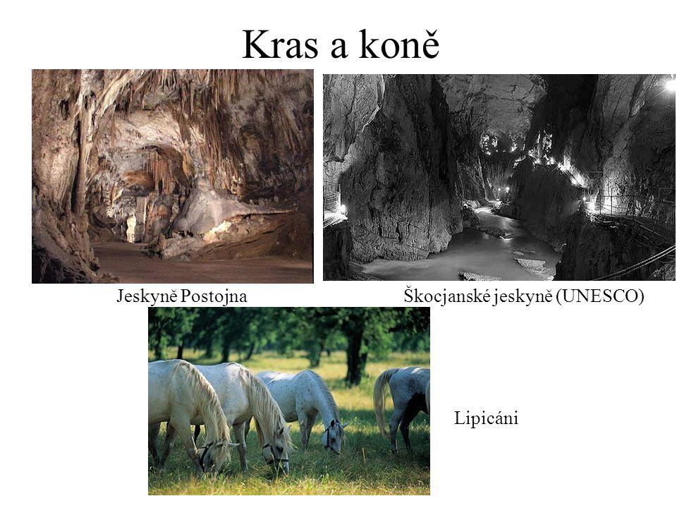 Kras a koně Jeskyně Postojna Škocjanské jeskyně (UNESCO) Lipicáni
