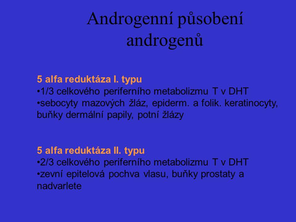 Androgenní působení androgenů