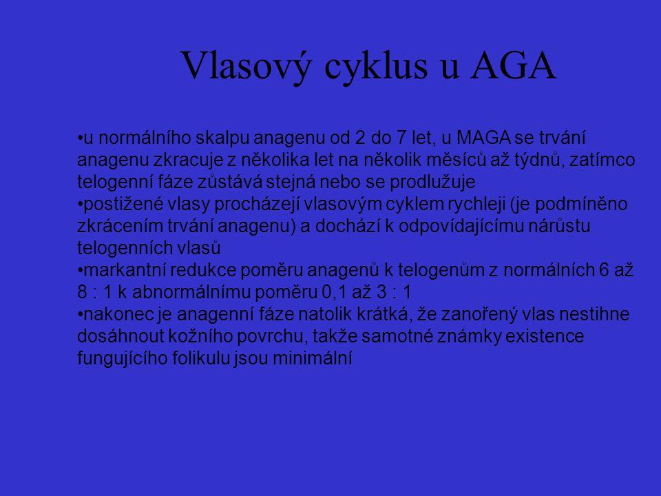 Vlasový cyklus u AGA
