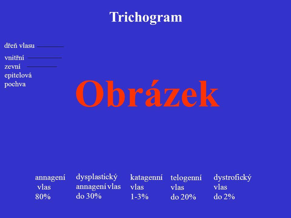 Obrázek Trichogram annagení vlas 80% dysplastický annagení vlas do 30%