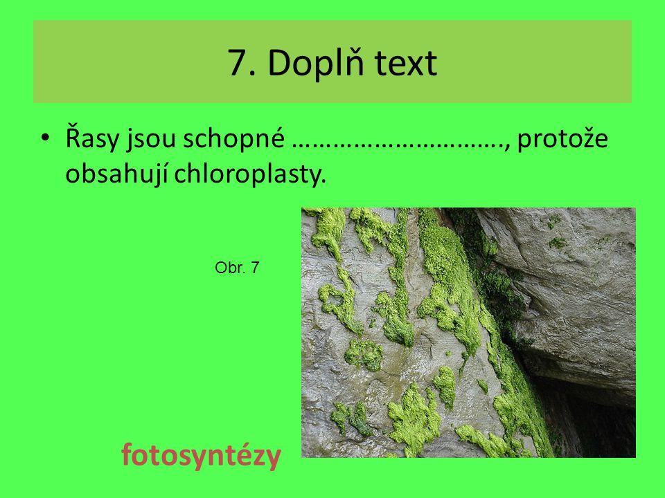 7. Doplň text fotosyntézy