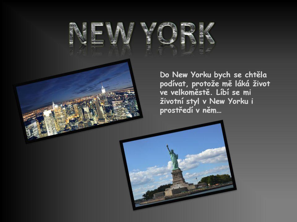 NEW YORK Do New Yorku bych se chtěla podívat, protože mě láká život ve velkoměstě.