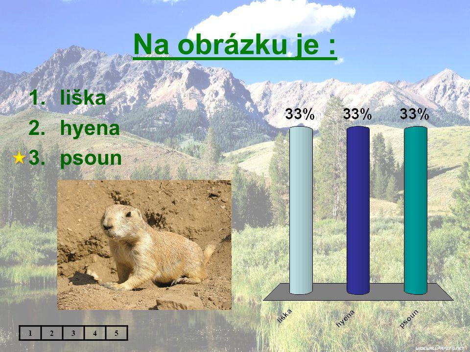 Na obrázku je : liška hyena psoun 1 2 3 4 5