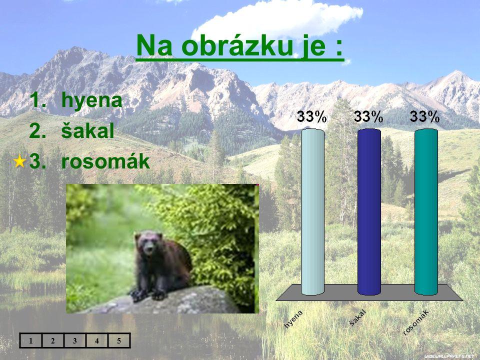 Na obrázku je : hyena šakal rosomák 1 2 3 4 5