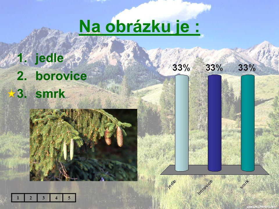 Na obrázku je : jedle borovice smrk 1 2 3 4 5