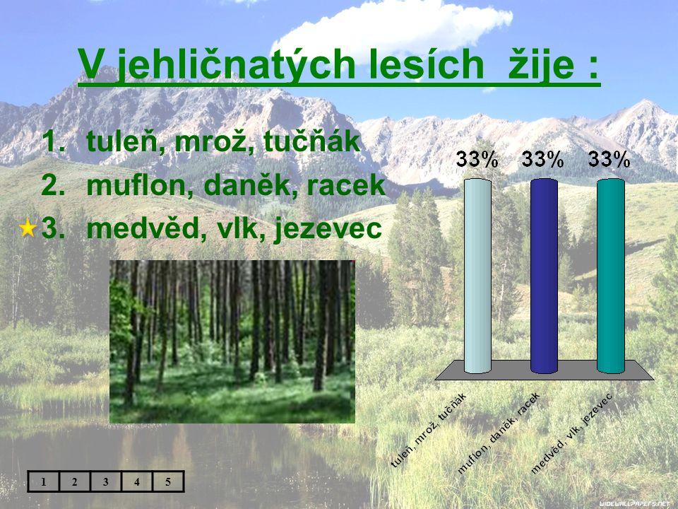 V jehličnatých lesích žije :