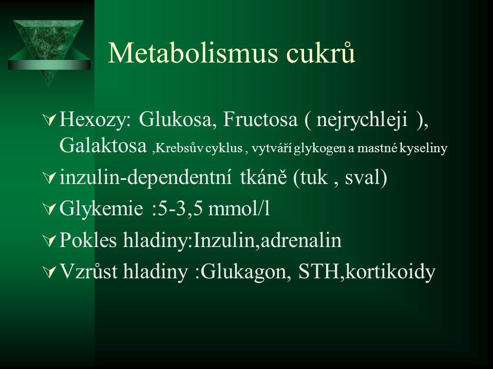 Metabolismus cukrů Hexozy: Glukosa, Fructosa ( nejrychleji ), Galaktosa ,Krebsův cyklus , vytváří glykogen a mastné kyseliny.