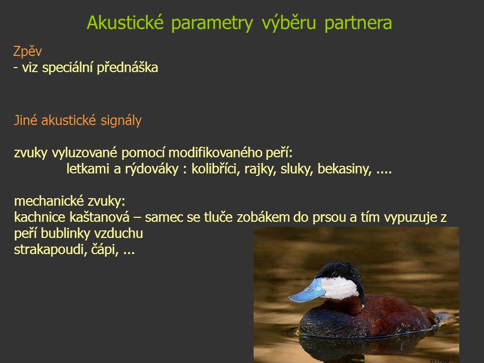 Akustické parametry výběru partnera