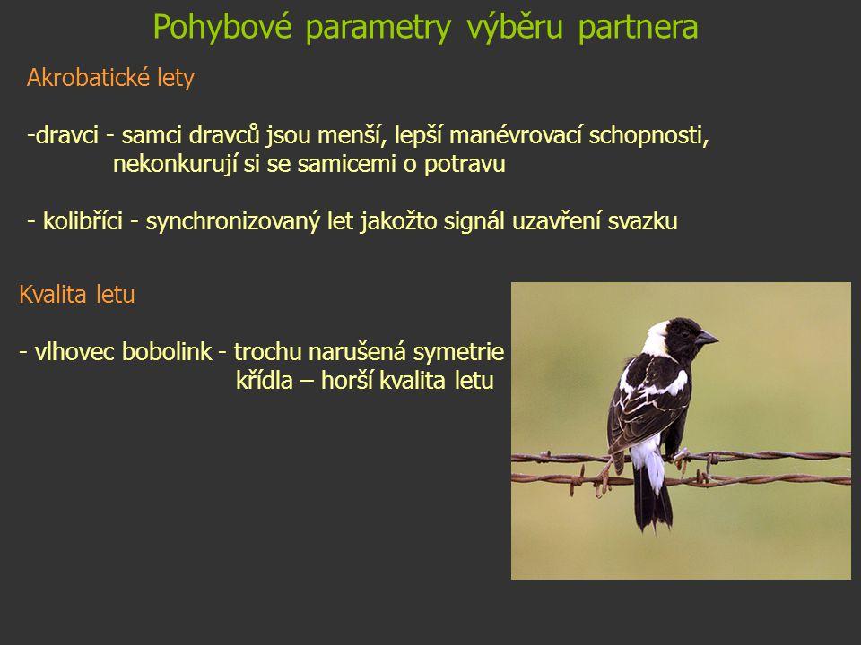 Pohybové parametry výběru partnera