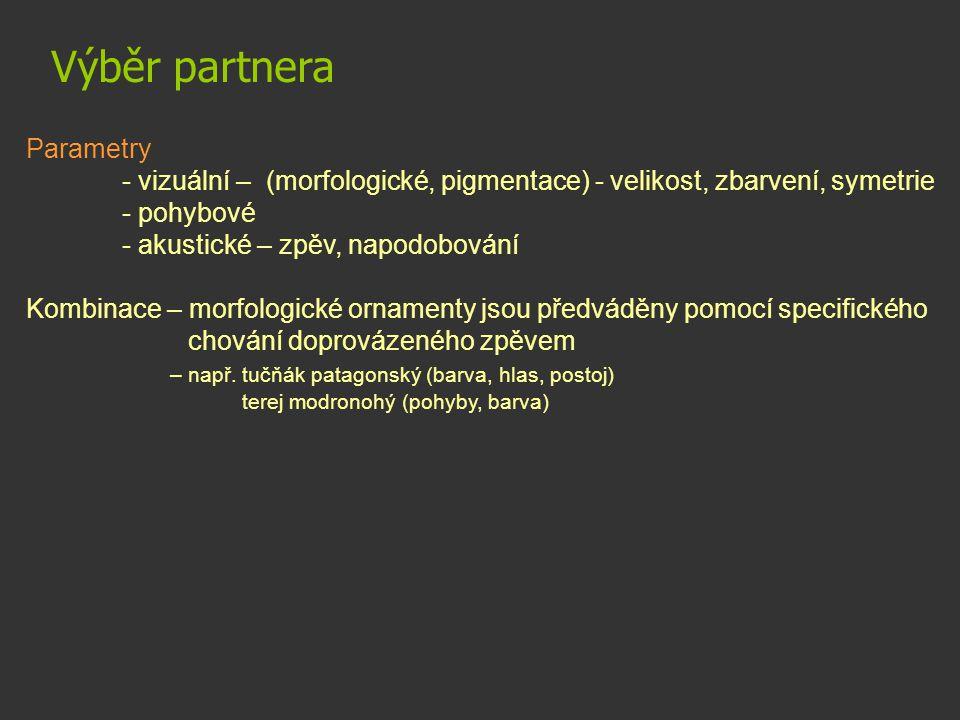 Výběr partnera Parametry