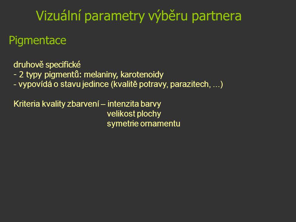 Vizuální parametry výběru partnera