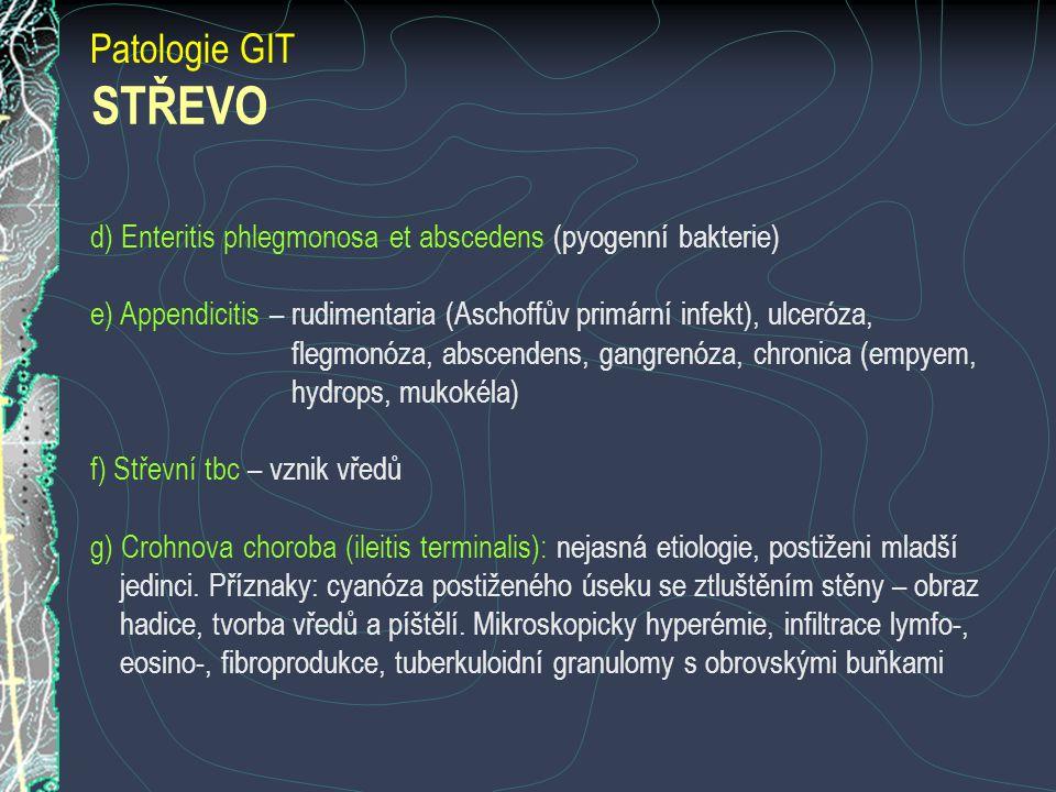 Patologie GIT STŘEVO. d) Enteritis phlegmonosa et abscedens (pyogenní bakterie)