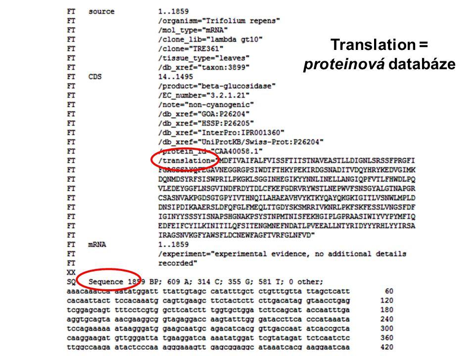 Translation = proteinová databáze
