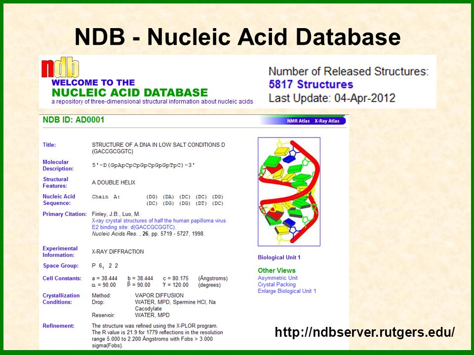 NDB - Nucleic Acid Database