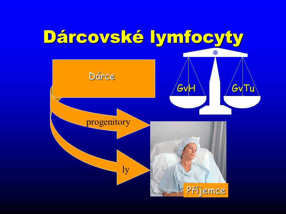 Dárcovské lymfocyty ly Dárce GvH GvTu progenitory Příjemce