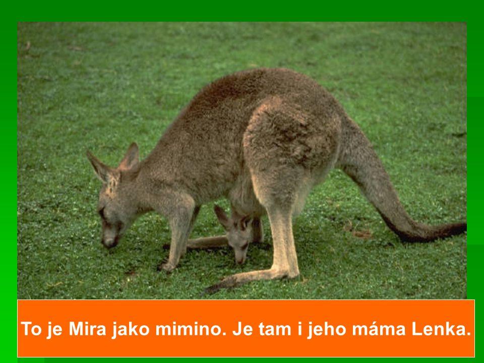 To je Mira jako mimino. Je tam i jeho máma Lenka.