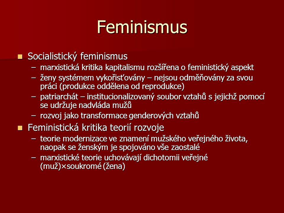 Feminismus Socialistický feminismus