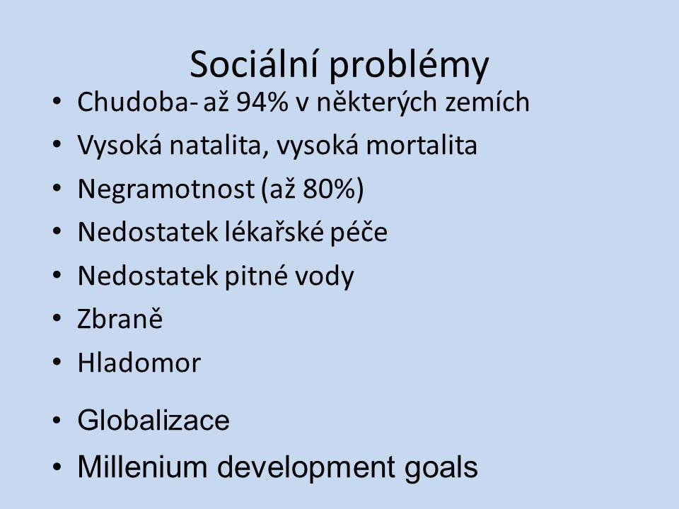 Sociální problémy Millenium development goals